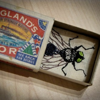 My Matchbox Fly